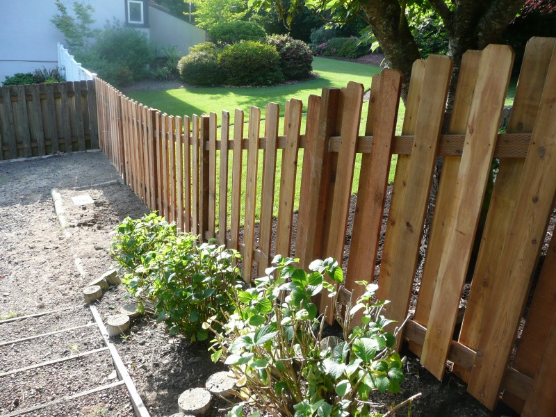 Maintain fence, yard to be a good neighbor | 4 Your Home - Home