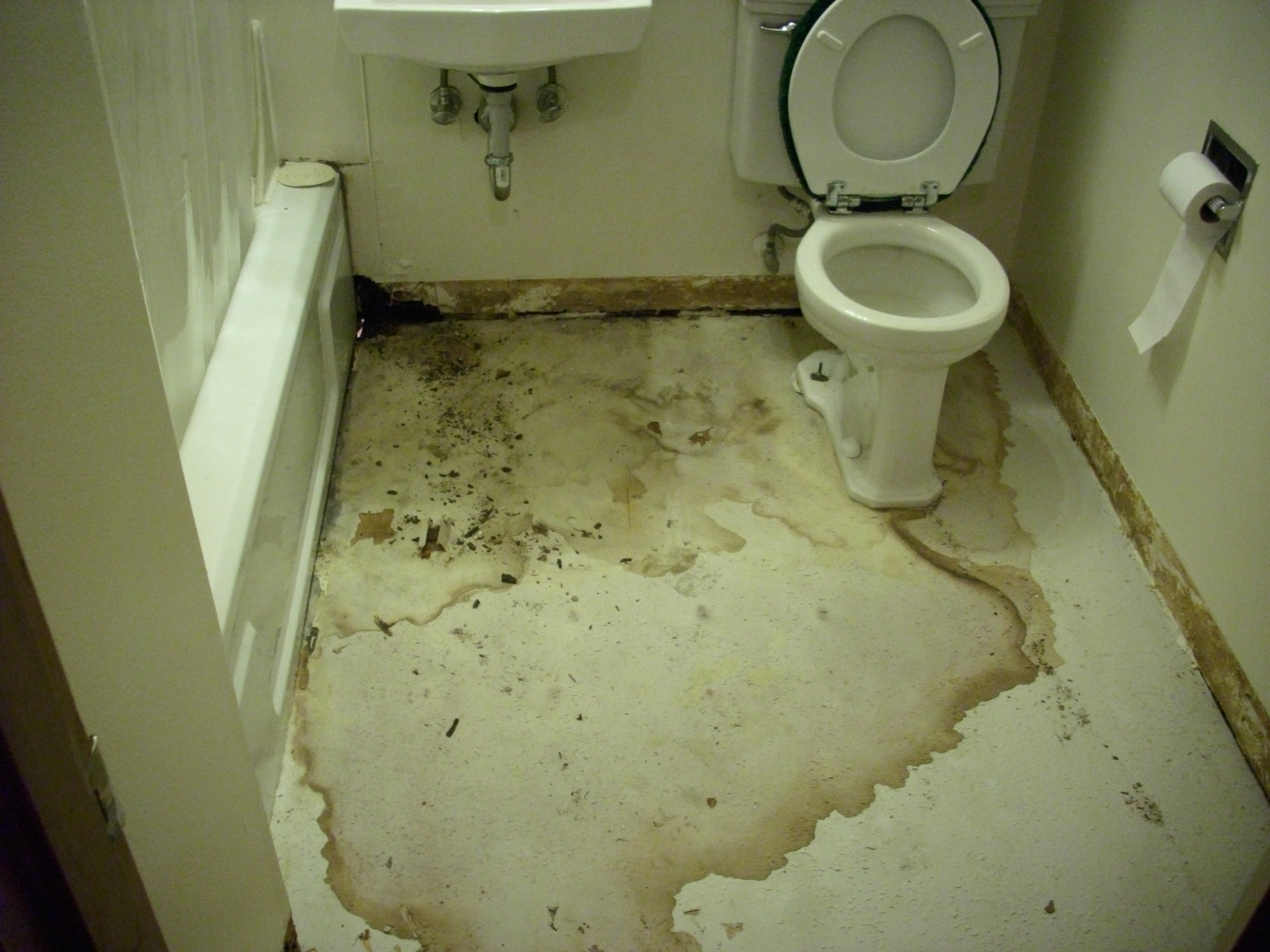 Bathroom floor repair water damage wood floors for Bathroom tile repairs and replacement